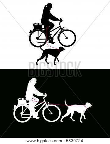 Women on bicycle with dogs on leash poster