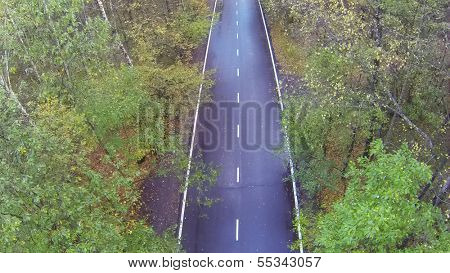 Road with wet  in forest. View from unmanned quadrocopter.