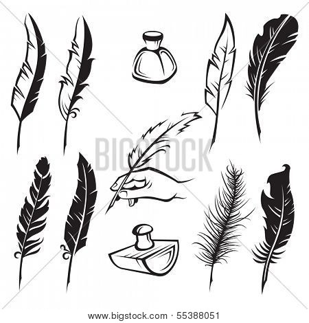 set of monochrome feather pens poster