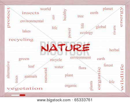 Nature Word Cloud Concept On A Whiteboard