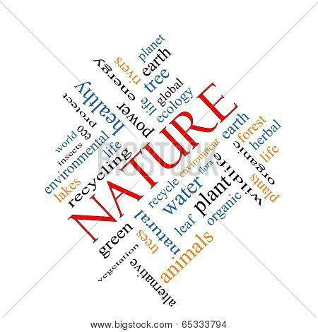 Nature Word Cloud Concept Angled