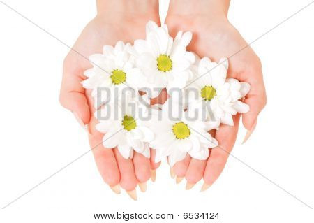 Cupped Hands With Flowers