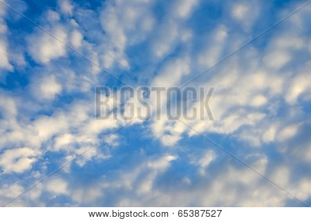 The blue sky and white fluffy clouds . poster