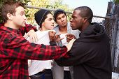 Fight Breaking Out Amongst Gang Members poster