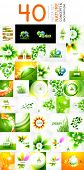 Vector mega collection of nature leaves, eco waves, abstract flowers for poster