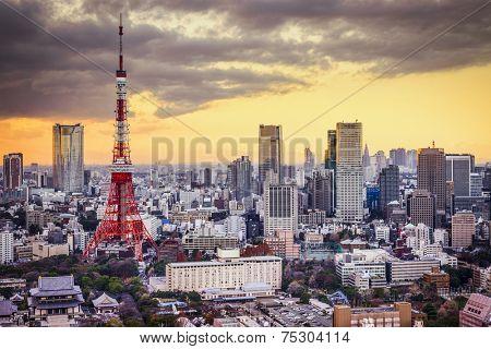 Tokyo, Japan cityscape at sunset.