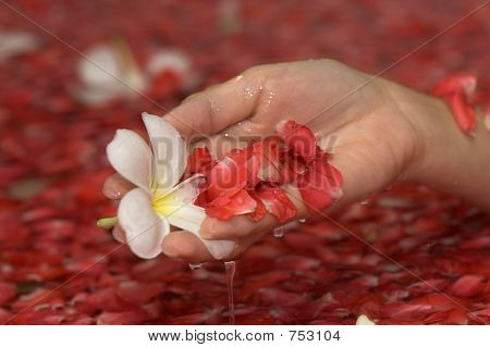 hand with flowers