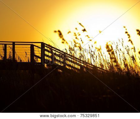 Sea Grass and Broadwalk in the morning light of Southport North Carolina