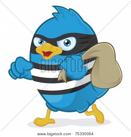 Blue Bird Thief