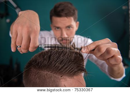 hairdresser  cuts   hair  with scissors on crown of handsome satisfied  client in  professional  hairdressing salon poster