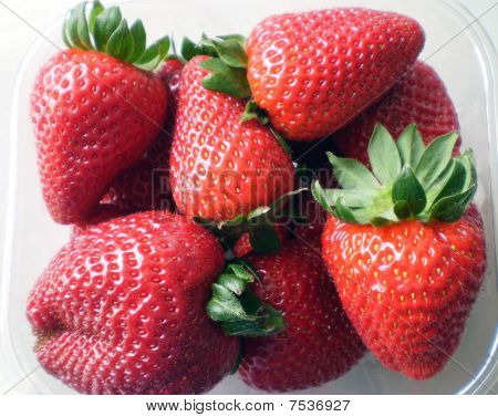 Strawberries in a plastic cage