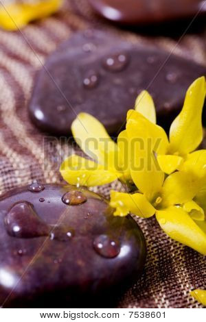 Spa Treatment - Rocks And Flower