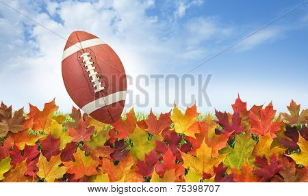 Football With Fall Leaves On Grass, Blue Sky And Clouds