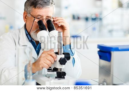 senior male researcher carrying out scientific research in a lab using a microscope (shallow DOF; color toned image) poster