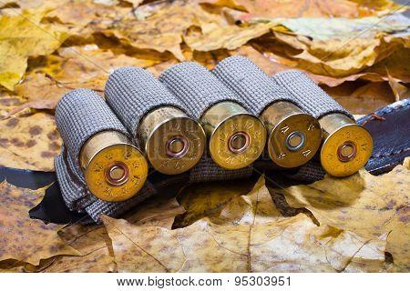 Bandoleer On The Fallen Leaves