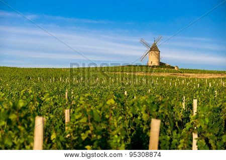 Mill of Moulin-à-vent village, Beaujolais, France