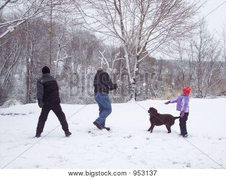 Sibling Snowfight