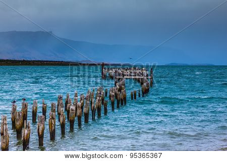 Strait of Magellan summer February afternoon. Waterfront, Punta Arenas.  Piles of the destroyed mooring act from water