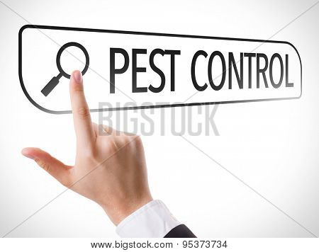 Pest Control written in search bar on virtual screen