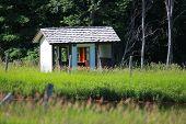 Abandoned shelter in Michigan rural area near Boyne falls poster