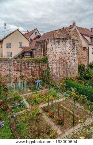 View of Defensive Wall and garden in Obernai Alsace France
