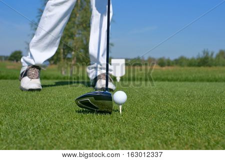 Golf driver and golf ball on the green