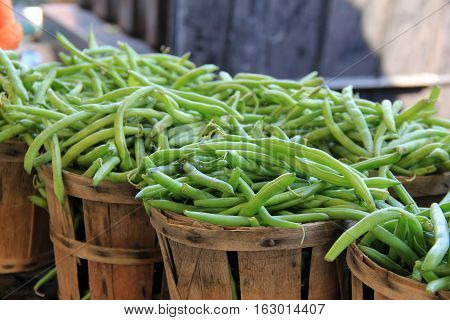 Wood baskets filled with just picked fresh green string beans