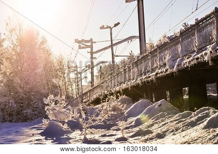 Photo of snow-covered railroad station in winter forest