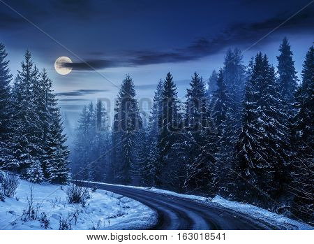 Snowy Road Through Spruce Forest At Night