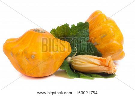 two yellow pattypan squash with leaf and flower isolated on white background.