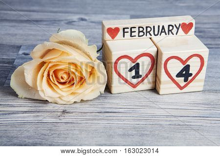 Valentine's day composition with wooden calendar and yellow rose. Handwritten February 14th inside red hearts. Gray wooden background.