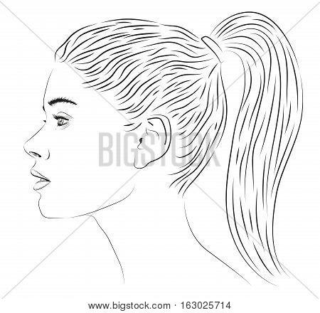 Girl lady woman female people person tail hairstyle beautiful young profile portrait picture portraiture likeness image. Vector closeup sign signboard square illustration isolated white black line