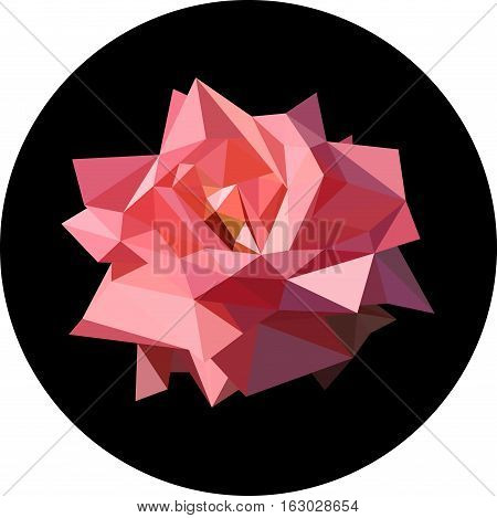 Pink rose in the style of the polygon. Fashion illustration of the trend in style on a black background. Contrast illustration.
