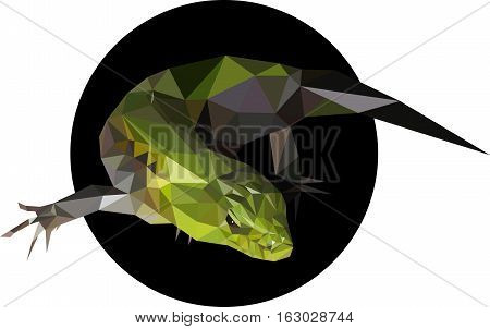 Green lizard in a polygon style. Fashion illustration of the trend in style on a black background.
