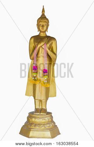 Buddha meditation on white background buda thailand