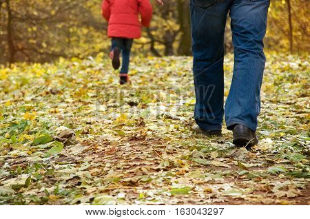the family for a walk. foot child and adult. autumn. a park
