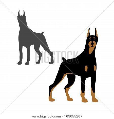 Doberman dog style vector illustration Flat set