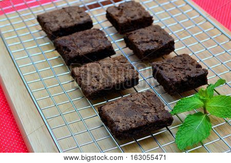 Delicious and soft fresh homemade brownie chocolate square and sliced on cooling rack