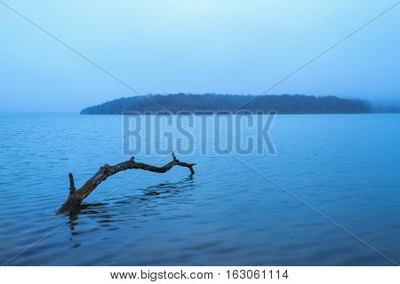 Morning fog at a lake outside of Kansas City Missouri. There is a log in the foreground.
