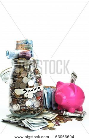 Growing Money On Piggy Bank.