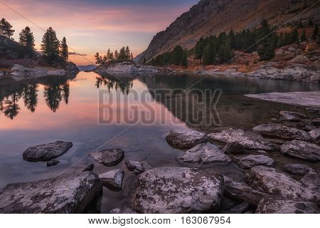 Mirror Lake Surface Reflecting Sunset Light And Pine Trees, Altai Mountains Highland Nature Autumn Landscape Photo. Beautiful Russian Wilderness Scenery Image.