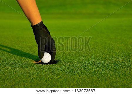 Golf golfer hand retrieving the ball in hole