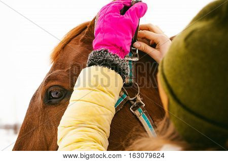 Woman In Winter Clothes And The Horse To Stand Together Against The White Snow. Love And Care For Ho