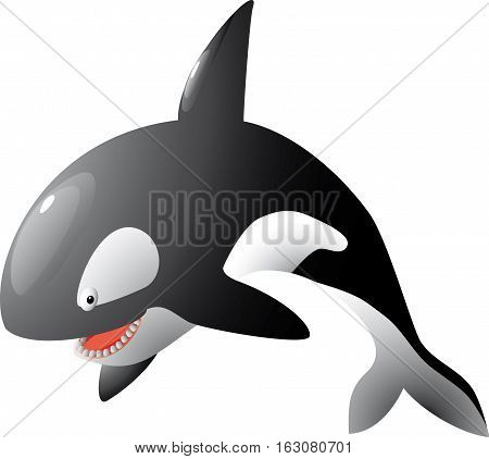 isolated cute cartoon vector killer whale jump