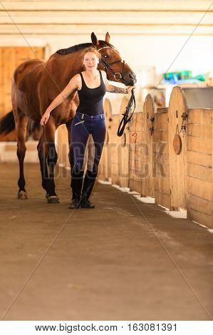 Taking care of animals love and friendship concept. Jockey young girl petting brown horse in stable