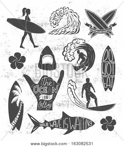 Set of surfing vintage design elements. Surf logo vector illustration. Surfboard logotypes. Retro style