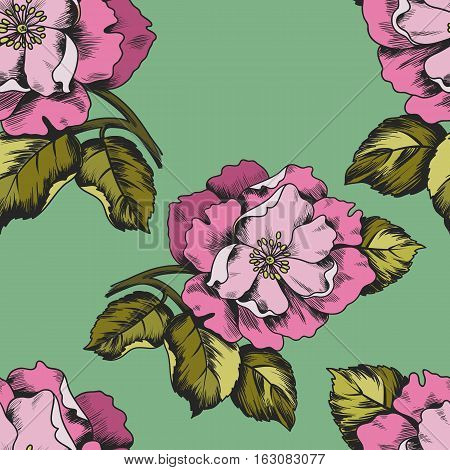 Seamless pattern with flowers peons for printing on paper or fabric. Vector