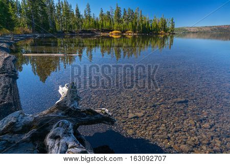 Reflection on Lewis Lake located in Yellowstone National Park Wyoming