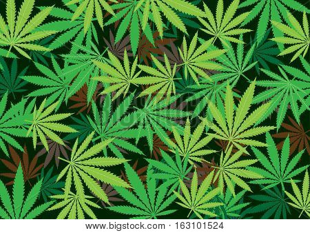 Cannabis hemp texture marijuana background texture. Green smoke hashish narcotic