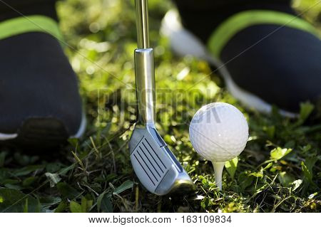 Golf equipments as putter and golf ball are in the grass.